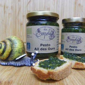 PESTO – Ail des Ours